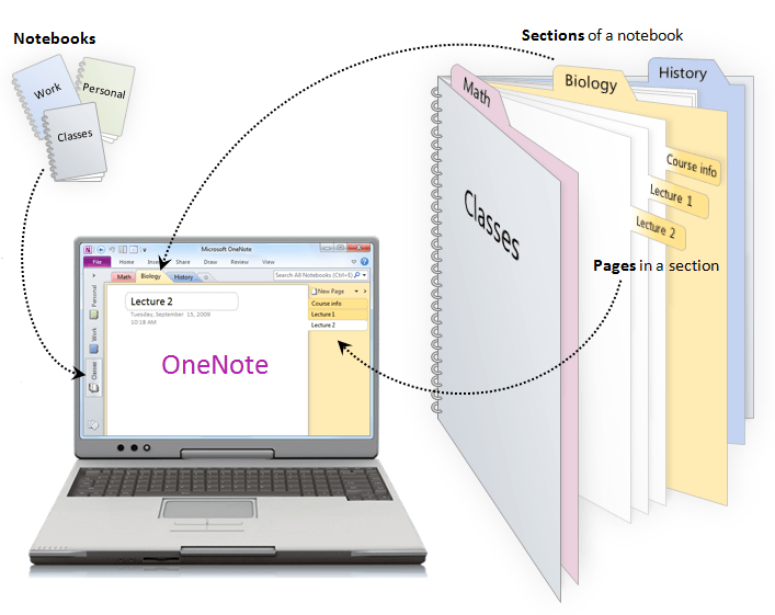 Laptop showing Microsoft OneNote open. Microsoft OneNote Training by Lingford Consulting